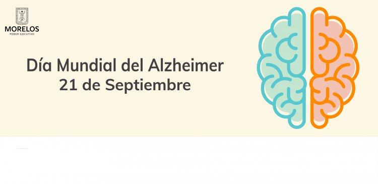 "<a href=""/slideshow/dm-del-alzheimer"">DM del Alzheimer</a>"