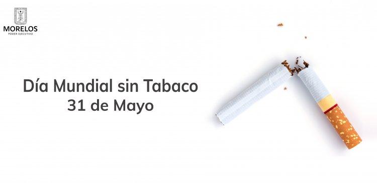 """<a href=""""/slideshow/dm-sin-tabaco"""">DM sin Tabaco</a>"""