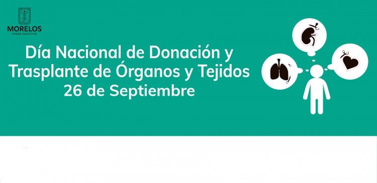 """<a href=""""/slideshow/donacion-de-organos"""">Donación de órganos</a>"""